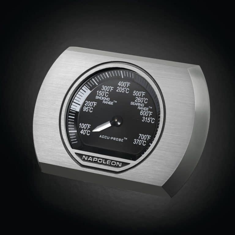Barbacoa Npaoleon termometro